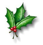christmas-holly-756624