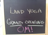 New Yoga Studio Lands In Harlem